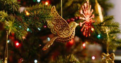"http://vestnikkladez.ru - ""Рождественские елки"