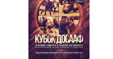 межрегиональный турнир по боевому самбо