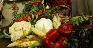 http://vestnikkladez.ru - благотворительный сбор осенних плодов